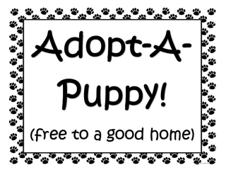 GiggleFish_Paw Patrol Puppy Adoption Favors